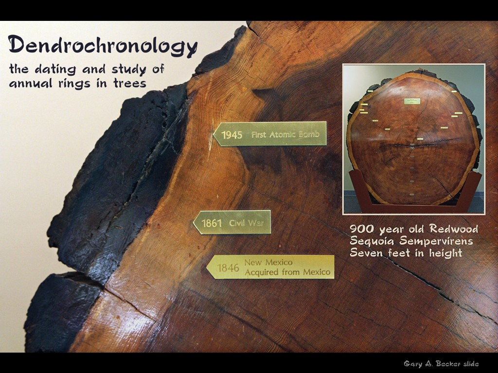 dendrochronology of tree ring dating Developed by astronomer a e douglass in the 1920s, dendrochronology—or tree-ring dating—involves matching the pattern of tree rings in archaeological wood samples to the pattern of tree rings in a sequence of overlapping samples extending back thousands of years.